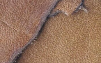 Special Offer** Full Leather Skins